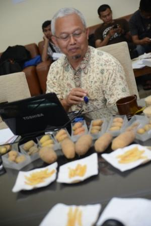 Professor of IPB was Ready to Inherit the Excellent Potato and Soybean Varieties
