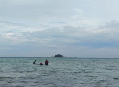 IPB Universty Students Explains about Fish Community in Karang Congkak Island