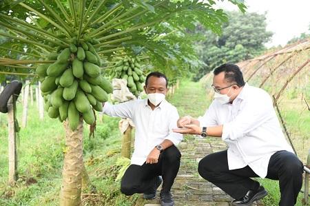 Menteri Investasi Bahlil Lahadalia Gandeng Perguruan Tinggi Majukan UMKM Nusantara