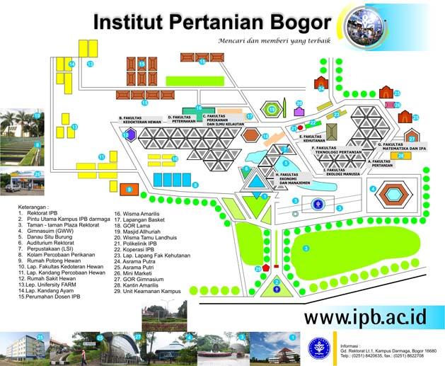 IPB Map