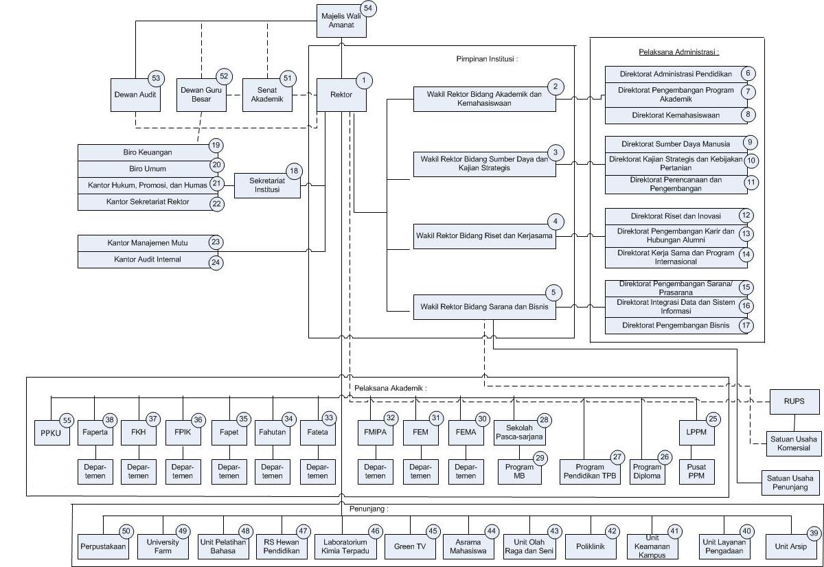 Struktur Organisasi IPB